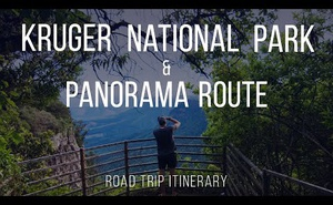 Road Trip - Panorama Route & Kruger Park